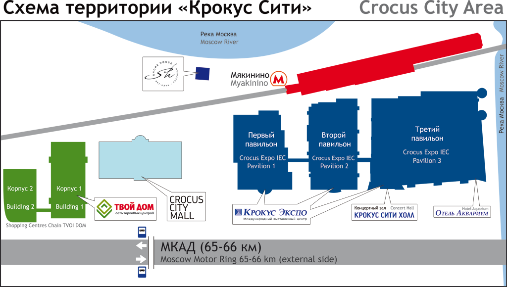 crocus area2.jpg.